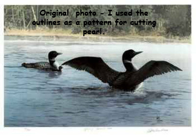 carl-arlen-yodeling-common-loon-2
